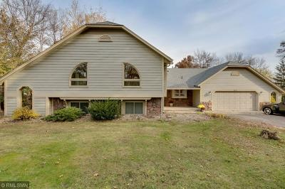 Prior Lake Single Family Home For Sale: 6710 Rustic Road SE
