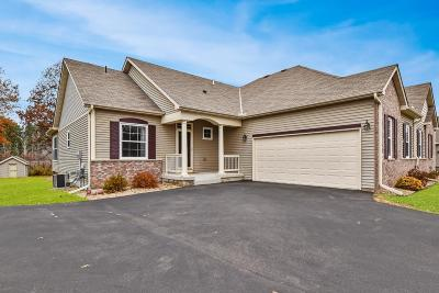 North Branch Condo/Townhouse For Sale: 4904 384th Trail