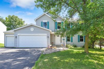 Savage Single Family Home For Sale: 13971 Aquila Avenue