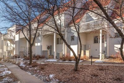 Minneapolis Condo/Townhouse For Sale: 3007 Lake Shore Drive