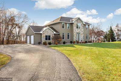 Faribault Single Family Home For Sale: 3364 Circle Bluff Trail