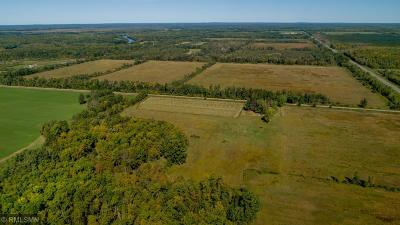 Aitkin Residential Lots & Land For Sale: 36127 415th Street