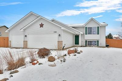 North Branch Single Family Home For Sale: 7593 385th Street