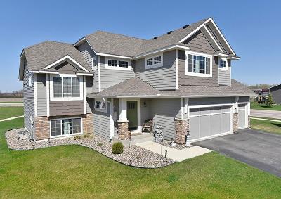 Faribault Single Family Home For Sale: 2826 Hanson Avenue
