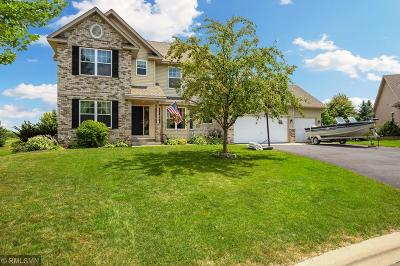 Lakeville Single Family Home For Sale: 17431 Goodhue Avenue