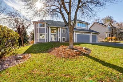 Burnsville Single Family Home For Sale: 217 Geneva Boulevard