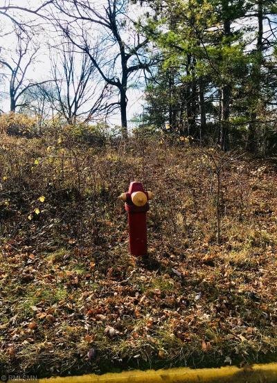 Residential Lots & Land For Sale: 1100 16th Avenue E