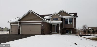 Cambridge Single Family Home For Sale: 1311 17th Avenue SE