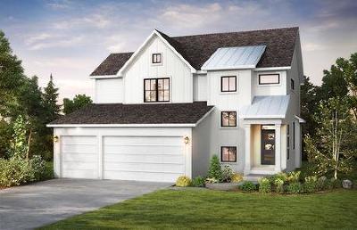 Saint Michael Single Family Home For Sale: 10955 23rd Street NE