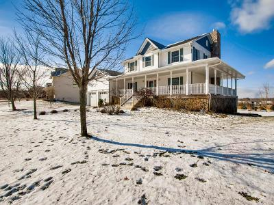 Elk River Single Family Home For Sale: 21168 Macon Court NW