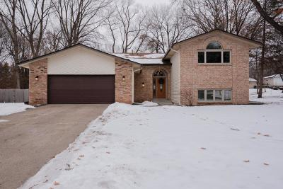 Lakeville Single Family Home For Sale: 20856 Italy Avenue