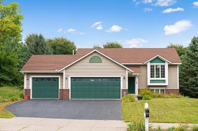 Rosemount Single Family Home For Sale: 13702 Shannon Parkway