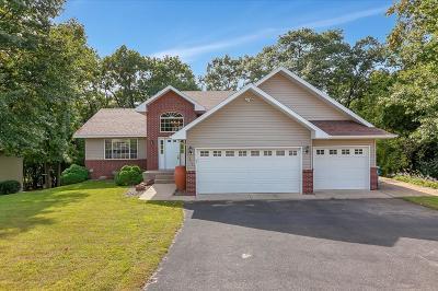 Sartell, Sauk Rapids Single Family Home For Sale: 217 Scott Drive