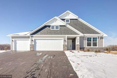 Wyoming Single Family Home Contingent: 24116 Holland Court