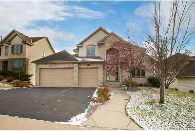 Eden Prairie Single Family Home For Sale: 9257 Shetland Road