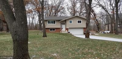 Ham Lake Single Family Home For Sale: 17255 Eveleth Street NE