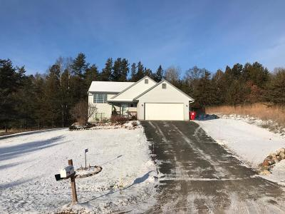 Breezy Point MN Single Family Home For Sale: $205,000
