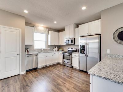 Maple Grove Condo/Townhouse For Sale: 9658 Olive Lane N