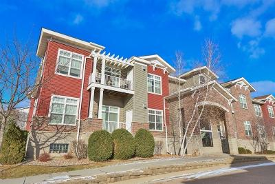 Chanhassen Condo/Townhouse For Sale: 9630 Independence Circle #101