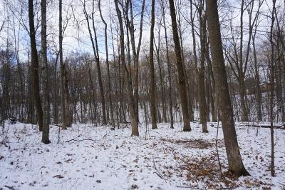 Ellsworth Residential Lots & Land For Sale: 610th Avenue