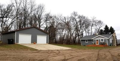 Sibley County Single Family Home For Sale: 57821 300th Street