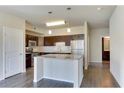 Minneapolis MN Rental For Rent: $1,631