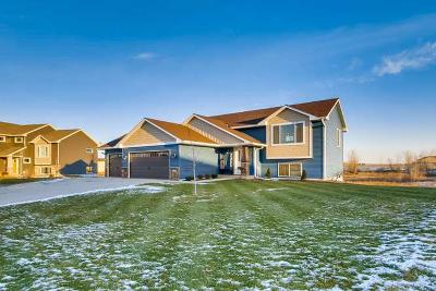 New Richmond Single Family Home For Sale: 1660 Grouse Way