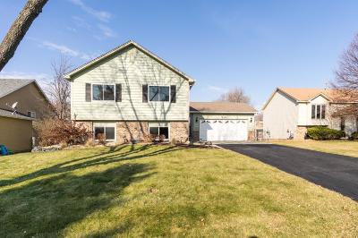 Apple Valley MN Single Family Home For Sale: $289,900