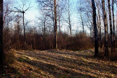 Residential Lots & Land For Sale: Tower Rd