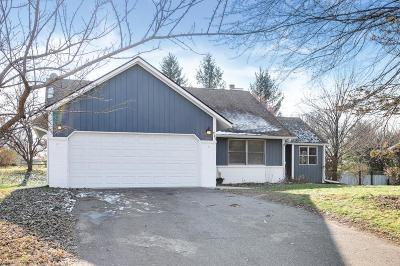 Eagan Single Family Home Contingent: 730 Hackmore Drive
