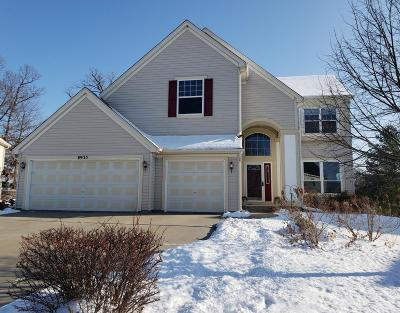 Inver Grove Heights Single Family Home For Sale: 8935 Carter Court