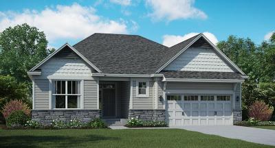 Eden Prairie, Chanhassen, Chaska, Carver Single Family Home For Sale: 1228 Oak Tree Court