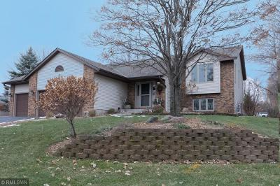 Forest Lake MN Single Family Home For Sale: $349,900