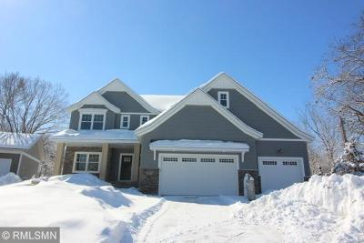 Chanhassen Single Family Home For Sale: 3871 Red Cedar Point Road