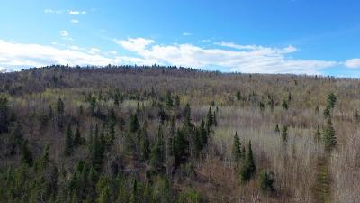 Residential Lots & Land For Sale: 6775 Mountain Home Trail