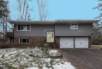 Forest Lake Single Family Home For Sale: 22422 Iverson Lane N