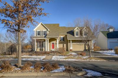 Chisago County, Washington County Single Family Home For Sale: 121 Rutherford Road