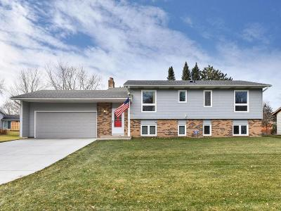 Maple Grove Single Family Home For Sale: 10617 Lancaster Lane N