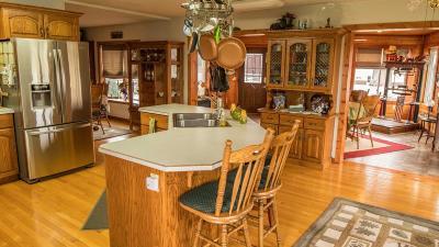 Faribault Single Family Home For Sale: 17965 Eiler Avenue