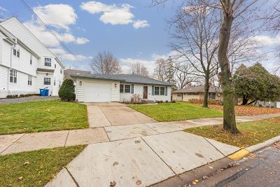 Excelsior Single Family Home For Sale: 241 2nd Street