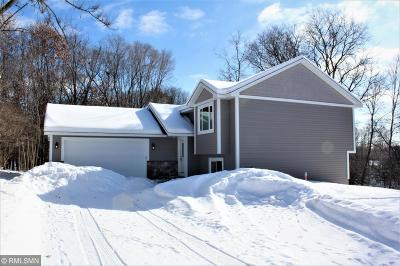 Coon Rapids Single Family Home For Sale: 13021 Crooked Lake Boulevard NW