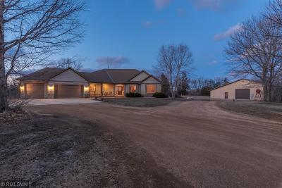 Carver County Single Family Home For Sale: 12755 County Road 43