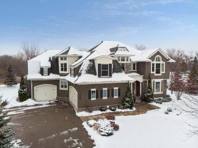 Chanhassen Single Family Home For Sale: 6900 Lucy Ridge Lane