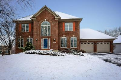Savage Single Family Home For Sale: 8500 Carriage Hill Road