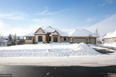 Medina Single Family Home For Sale: 3947 Wild Meadows Drive