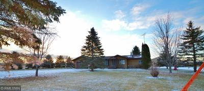 Saint Joseph Single Family Home For Sale: 7385 322nd Street