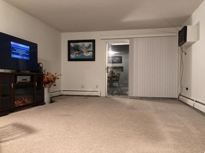 Burnsville Condo/Townhouse For Sale: 12834 Nicollet Avenue #101