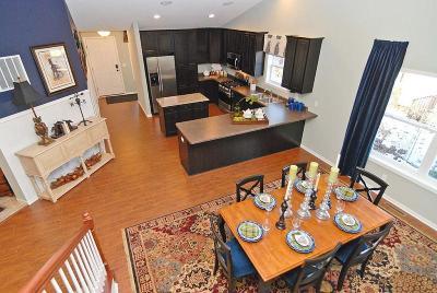 Carver, Eden Prairie, Chanhassen, Chaska Single Family Home For Sale: 1330 Chestnut Circle