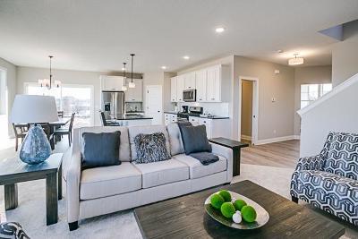 Hudson Single Family Home For Sale: 9 Promise Boulevard