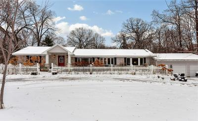 Hennepin County Single Family Home For Sale: 55 Pleasant Avenue